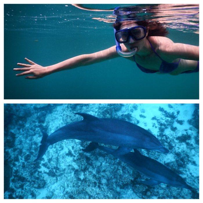 Šnorchlování s delfíny v Kizimkazi