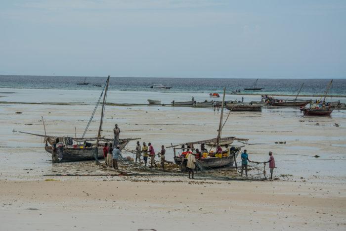 Pláž nedaleko ostrova Mnemba